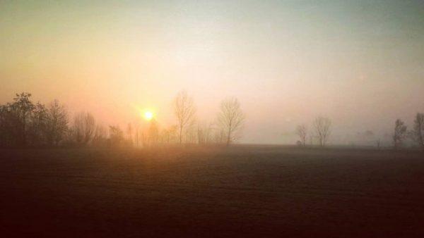 🌄 Sveglia all'alba, pronti per una nuova avventura! 🎥